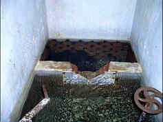 Detailaufnahme des wahrscheinlich an eine rheinisch streichende Störungsfläche gebundenen Quellaustritts des Aschenbrunnen.