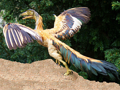 Urvogel Archaeopteryx