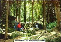 Südwest-Teil des Druidenhains