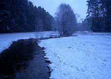 Hembach bei Furth; Winter 2005