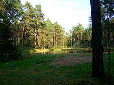 Karpfenteich am Höllenbach nordöstlich Furth