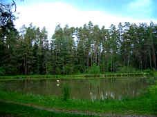 Fischteiche am Höllenbach nordöstlich Furth