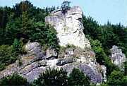 """fossiles Riff: der """"M�llersfelsen"""" bei Streitberg/Ofr."""