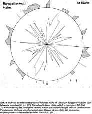 Abb. 4: Kluftrose des gesammten von POLL untersuchten Raumes