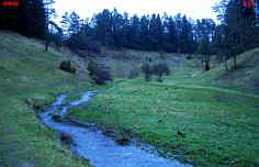 Das Trockental  nördlich der Heroldsmühle bei Heiligenstadt/Ofr. nach der Schneeschmelze