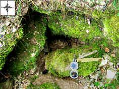 """freigelegte Quelle 2 des """"Kleinen Tummlers"""" im Trockental der Leinleiter."""