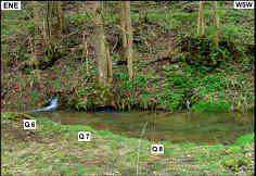 """Die Karstquellen """"Q 6"""" bis """"Q 8"""" am SSE´ Talfelsen der Leinleiter an der Heroldsmühle."""
