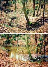Eichelgartenponor SE´ der Mysteriengrotte 1200 m SSE´ Krottensee im inaktiven und im aktiven Zustand.