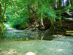 Karstquelle Lillachquelle E´ Weißenohe (Nördliche Frankenalb)