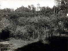 Steinberg mit der Bismarckgrotte 3,6 km SSE´ Neuhaus/Peg.