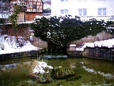 Pegnitzquelle Feb. 2005