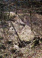 Eichelgarten-Ponorgraben