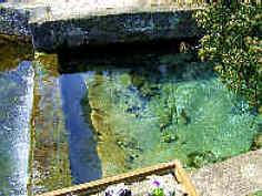 Detailaufnahme der Pegnitzquelle April 2006