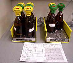 Messung der Sauerstoffzehrung einer Wasserprobe