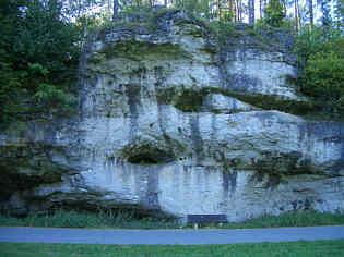 Karströhren in der W' Felswand des Trockentales nördlich Schirradorf/Ofr.