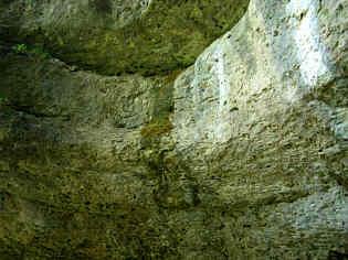 Detailaufnahme des Schinderbrunnen im Trockental N' Schirradorf/Ofr.