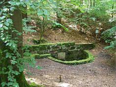 Gesamtansicht der Buchenklinge-Quellfassung am Nordhang des Schmausenbucks.