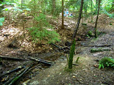 "Buchenklingenbach 520 m ENE´ der ""Gritz"" am Schmausenbuck; MP ""Bu1""."