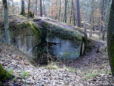 """Mittelalterlicher Steinbruch im Mittleren Burgsandstein; """"Langenlohe"""" (= heutiges """"Steinbrüchlein"""") N´ Worzeldorf."""