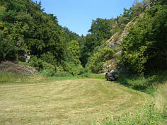 Trockental N' Ortsspitz im Karstgebirge von Seidmar/Ofr.