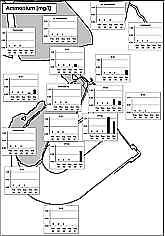 Ammonium-Meßwerte 02/99 - 03/01
