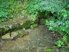 Birkenreuther Talquelle im Karsttal 1130 m WNW' Birkenreuth/Ofr.