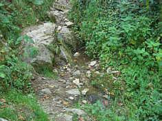"""Die Karstquelle """"MQ_2"""" unterhalb des """"Schneiderlochs"""" an der """"Klararuh"""" ENE' Streitberg"""