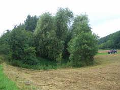 Doline bei Birkenreuth/Ofr.