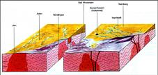 Paläogeographie Buntsandstein