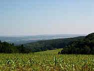 Hahnbacher Senke