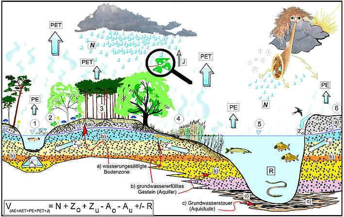 Grundwasserfragen bei deponien und altlasten for Definition von boden