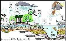Schema des Wasserkreislaufes