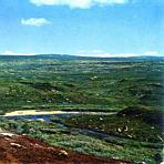 Tundra-Landschaft